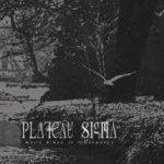 plateausigma2